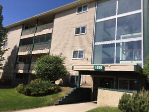 Great Opportunity to Own in Millwoods