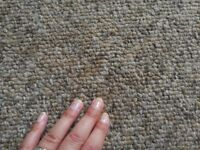 Carpet approx 28 m2