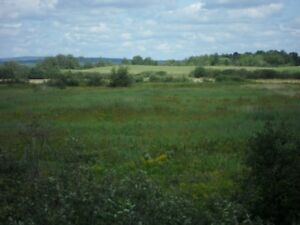 FALL special pricing--2Lots with ROADFRONTAGE&river behind them!
