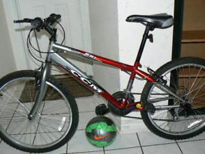 Handsome Medium Bike- Upto 5 Feet 7 Inch- CCM Rebel