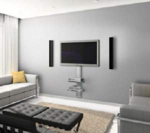 The Professionals - TV wall mount, Home Theater Install