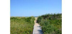 Beautiful Sandy Beautiful Beach Access Bayfield Nova Scotia