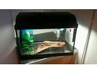 Fish tank 35L