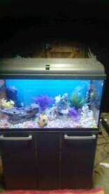 """32""""FISHTANK WITH CABINET WITH TWIN LED LIGHTING IN GOOD CONDITION"""