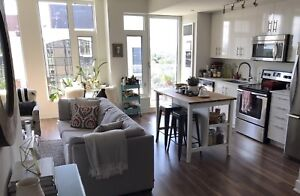 Modern 1 bedroom at Landsdowne with beautiful views of the Glebe