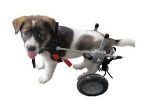 Small dog wheelchair (5 to 15 pounds)