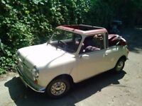 austin mini convertible with hearts shaped windows 1979