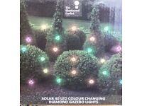 40 Gazebo coloured lights