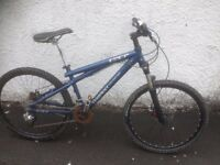 GT 3.0. Unisex Dolwnhill Bike. Fully serviced, fully safe and ready to go.