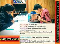Math Experienced Tutor for Affordable Prices - Scarborough Only