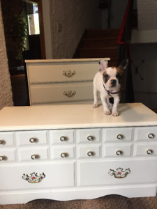 Beautiful White Dresser and Toy Chest or Blanket Chest
