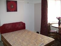 Large Double Room for a Professional - Clean and Tidy House