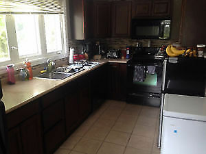 One room for rent in downtown Fredericton