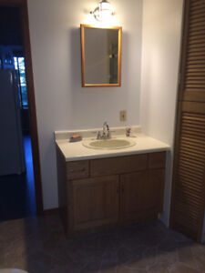 bathroom, shower, sink, cabinets and light