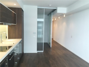 **1 BR CONDO DOWNTOWN TORONTO - 44 Charles St. East