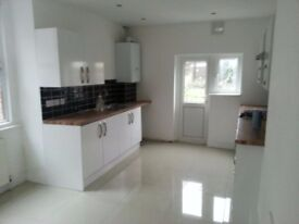 5 double bedroom and 2 bathroom semi-detached house with parking and large garden - Selhurst,Croydon