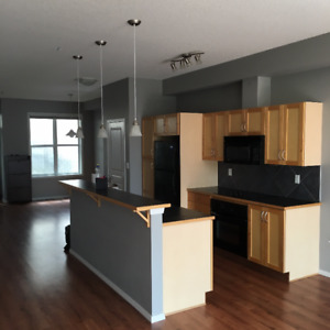 Two Bedrooms Two Bathrooms Condo near southgate
