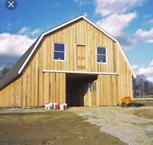 Looking for barn to rent