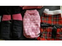Dog coat jumper dress and harness