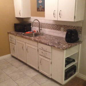 Avail Nov. 1, Furnished Separate Entrance One Bed Suite