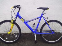 Peugeot Exo adult mountain bike - front suspension