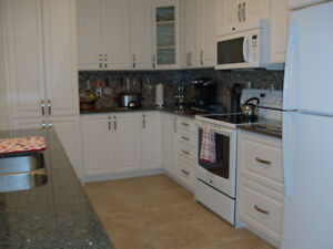 Furnished, all inclusive apt. 2 bdrm + den, sublet 6mths