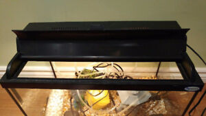 10 Gallon Fish Tank for Sale