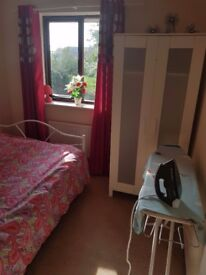 Double room to let saprate toilet & shower