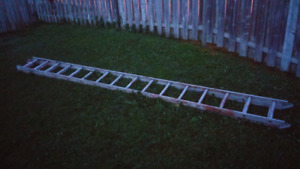Extension ladder for a case of beer.