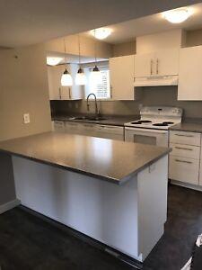 Recently Renovated Basement Suite in Brock