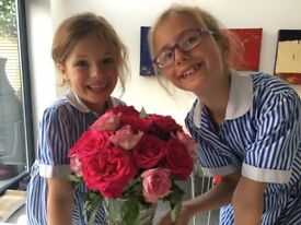 French speaking au pair needed to help with our lovely 2 daughters in London