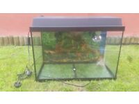 Juwel aquarium 60cm wide x 40cm high x 30cm deep