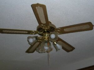 """52"""" Ceiling Fan with 5 Lights"""