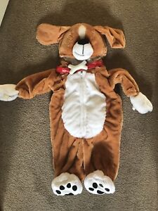 Halloween Costume (9 Month Old)
