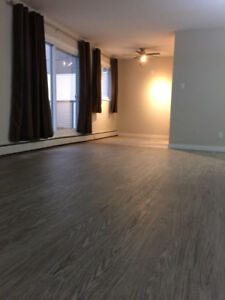 Large 2 bedroom condo, Garneau (Old Strathcona) by UofA