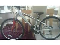 Boys cairn revolution bike