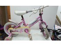 Apollo Tricycle
