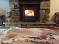 Clearview Vision 500 Woodburner Log Burner Stove