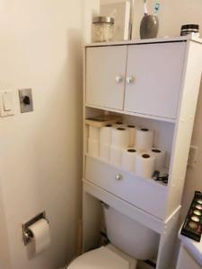 Shelving unit for toilet
