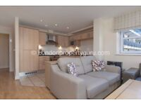 Luxury 1 Bed spacious apartment with balcony located in Clapham