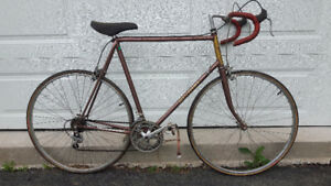 Vintage Mens Nishiki Olympic Road Bike - 12 speed