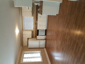2 bed 1 bath bsmt in boundary park