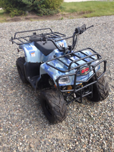 Kid's ATV - Can't get it started - first $300 takes it