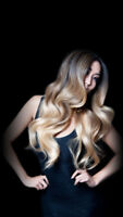 ★PROMO★ RALLONGES REMY POSE / DISTRIBUTION REMY EXTENSIONS