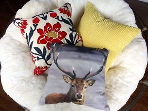 Throw Pillows- $15ea obo