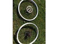 Halo SAS Disc Wheels (PAIR)