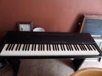 Keyboard Yamaha YPP-50 AWM