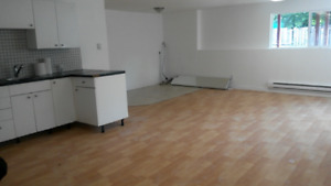Renovated 3 br ground level basement suite