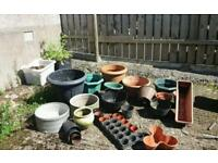 Plant pots job lot see both photos