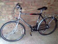 Raleigh bike(new)